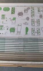 16 mapas escuela antiguos  genoma 1200 €  - 100x90 cm (2)
